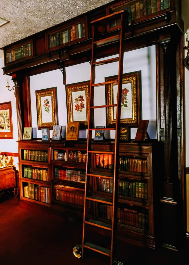 Library at the Historic Argo Hotel