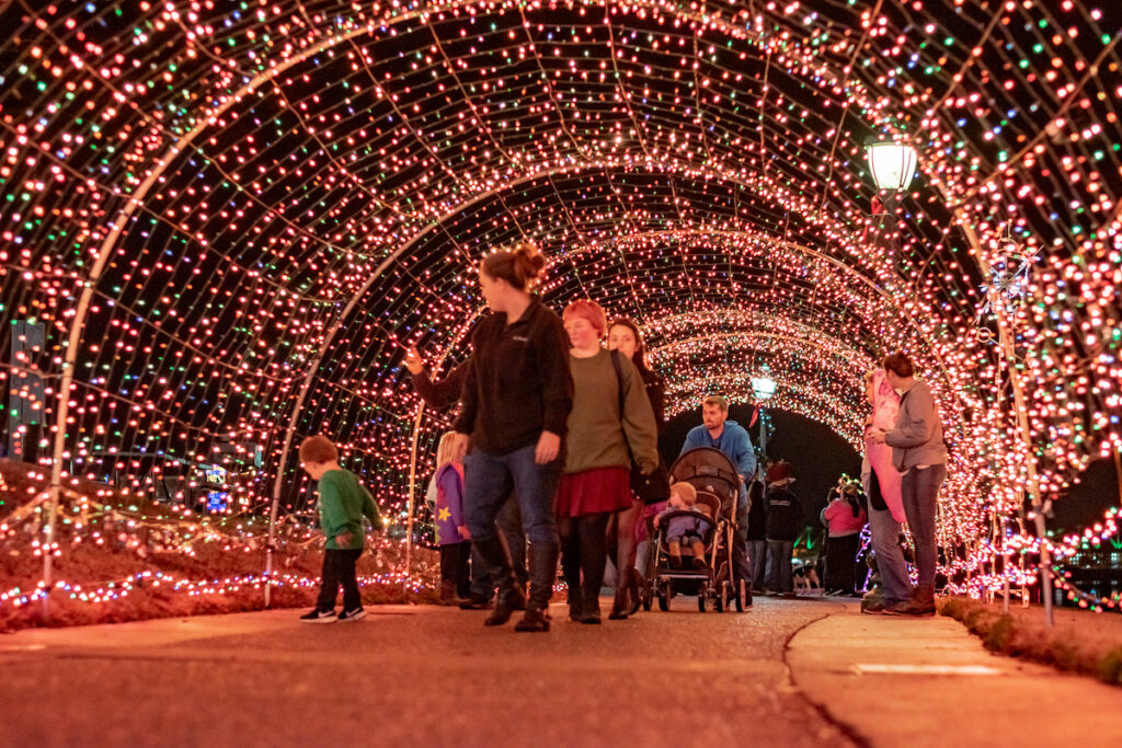 Lights at Christmas on Cumberland during winter in Clarksville.