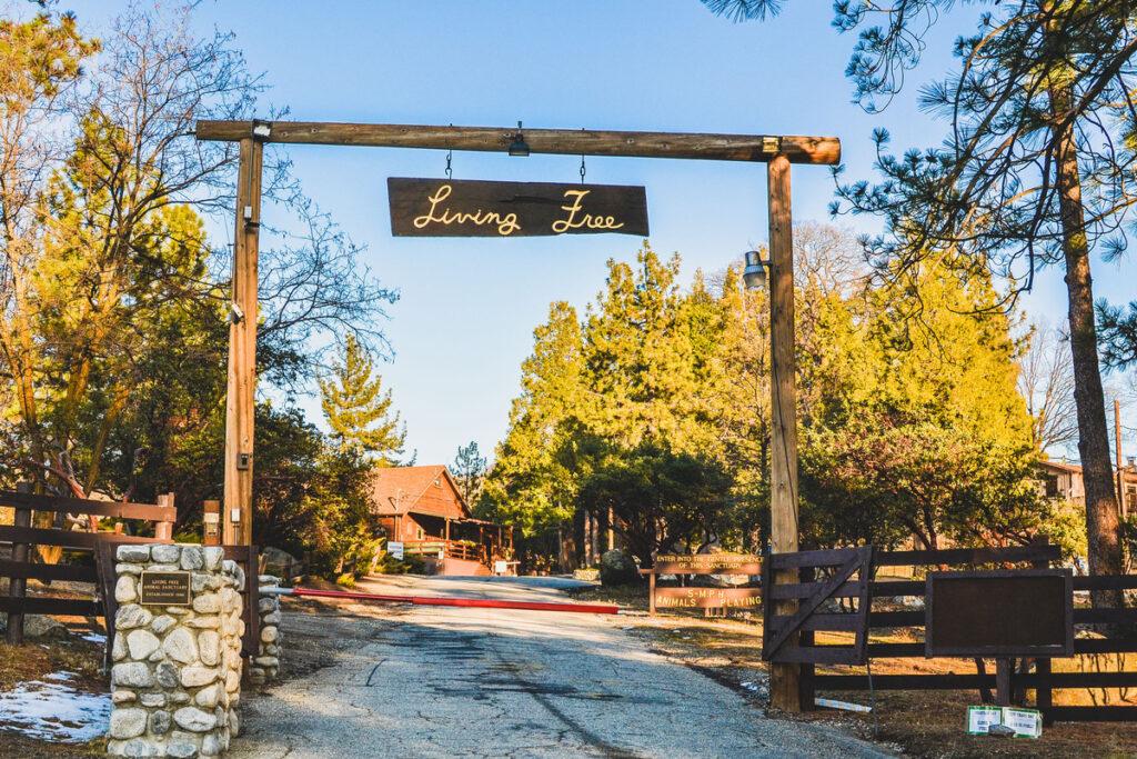 Living Free Animal Sanctuary near Idyllwild, California.