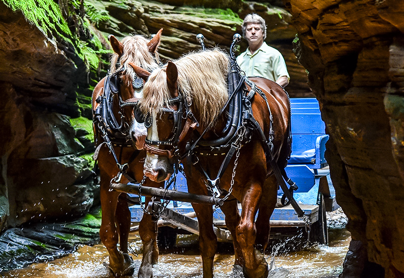 Lost Canyon Horse Tours in the Wisconsin Dells.