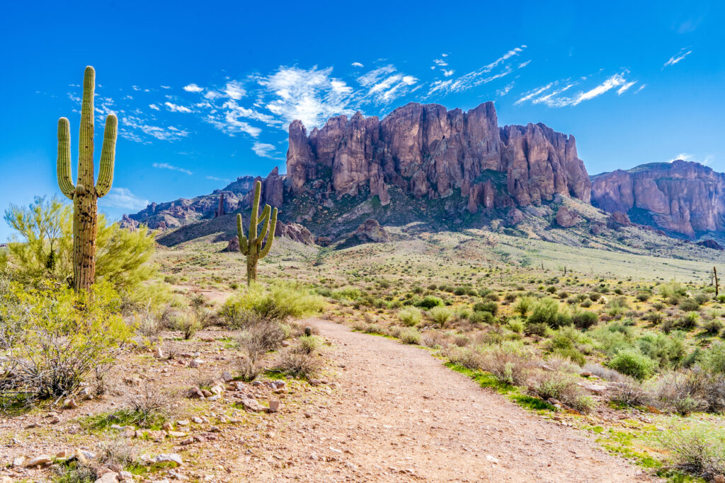 Lost Dutchman State Park at the foot of Superstition Mountain.