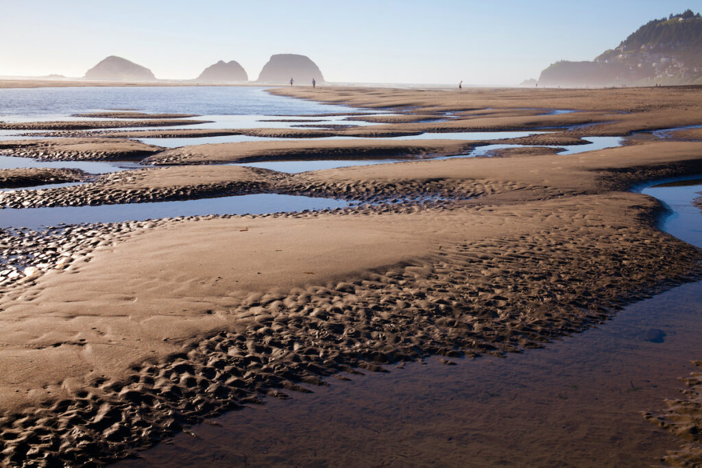 Low tide at Netarts Bay in Oregon.