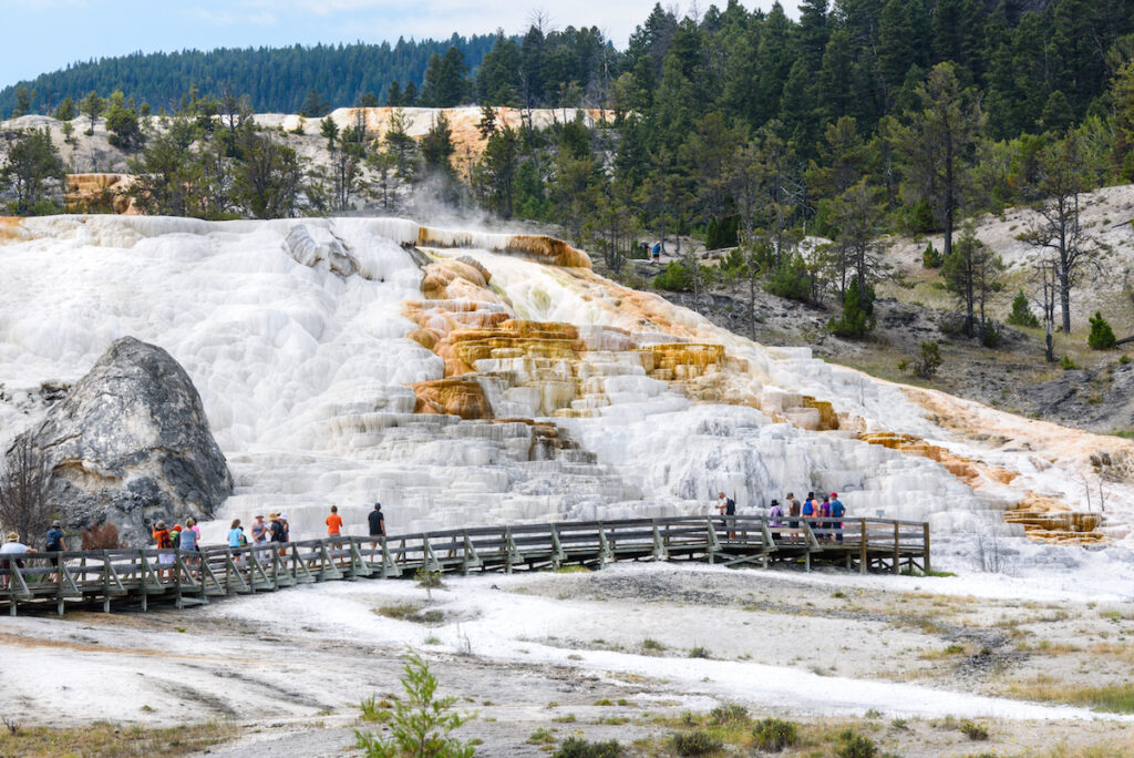 Mammoth Hot Springs Terraces in Yellowstone National Park.
