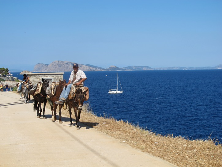 Man riding donkey on the coast of Hydra, Greece