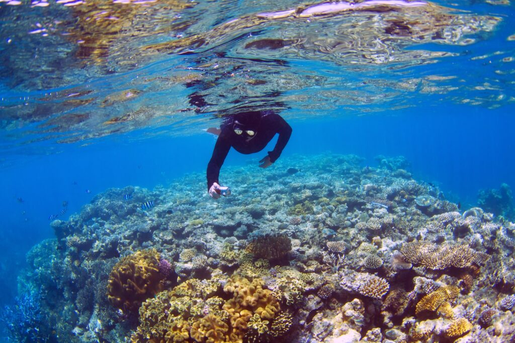 Man snorkeling at the Great Barrier Reef.