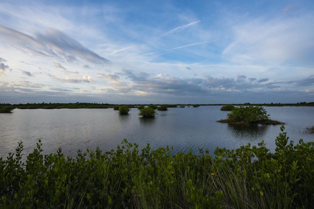 Merritt Island National Wildlife Refuge in Florida.
