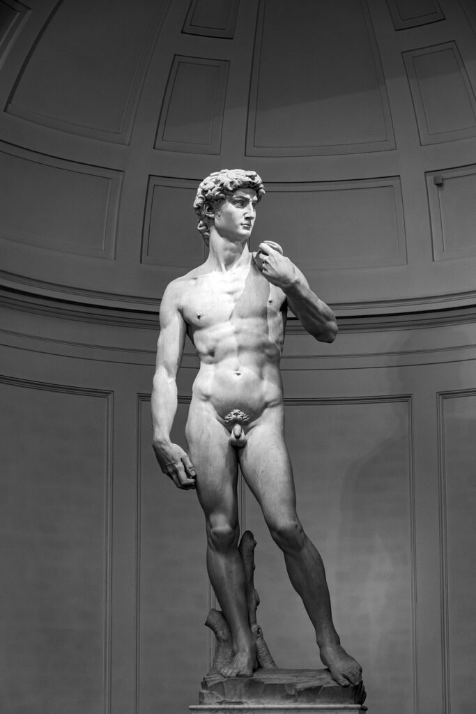 Michelangelo's David at the Accademia Gallery Museum in Florence.