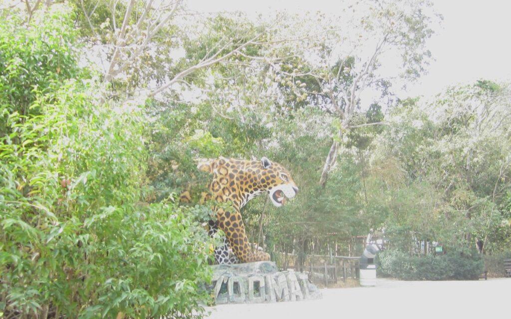 Miguel Alvarez del Toro Zoo in Tuxtla, Mexico.