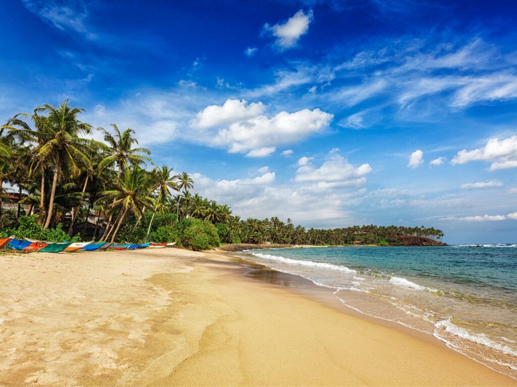 Mirissa Beach in Sri Lanka.