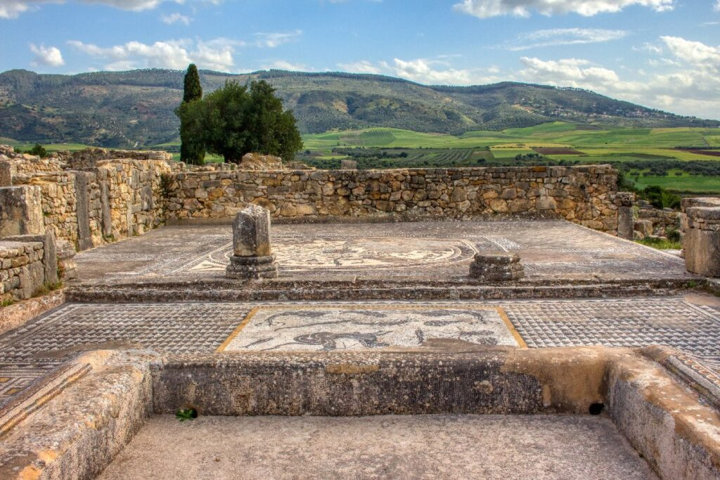 Mosaic floors at the ruins of Volubilis, Morocco.