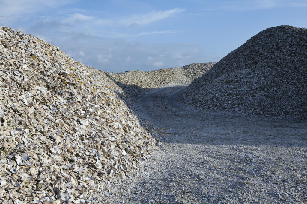 Mounds of oyster shells in Oysterville, Washington.