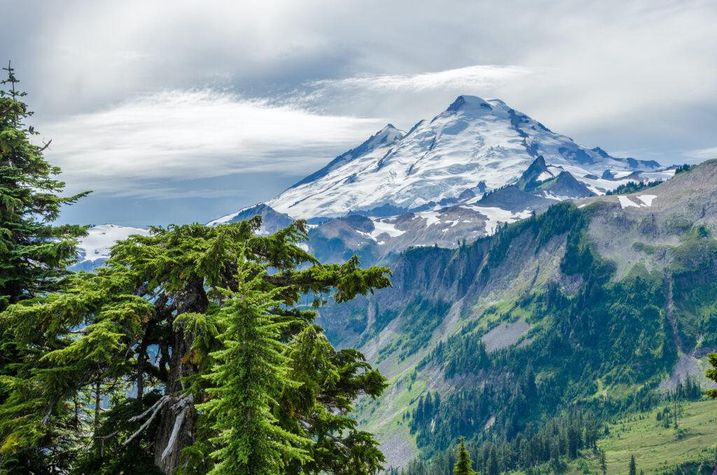 Mount Baker in the Cascades.