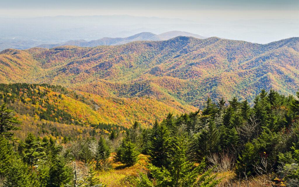 Mount Mitchell State Park in Burnsville, North Carolina.
