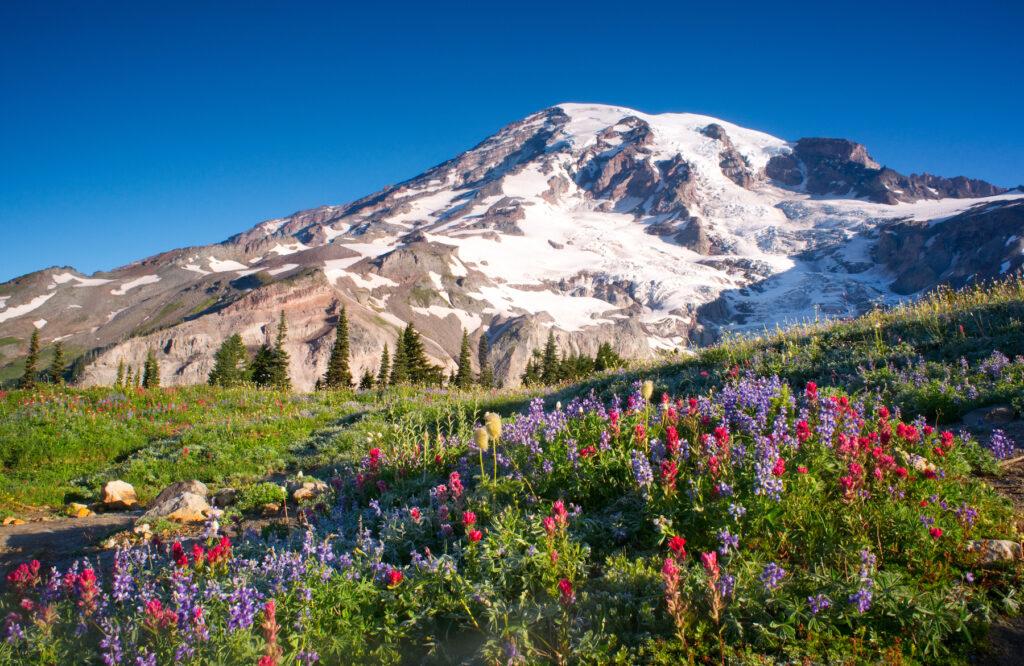 Mount Rainier in the Cascades.