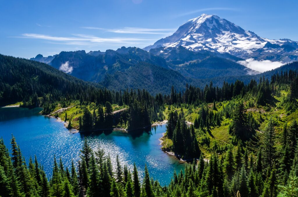 Mount Rainier National Park in Washington.