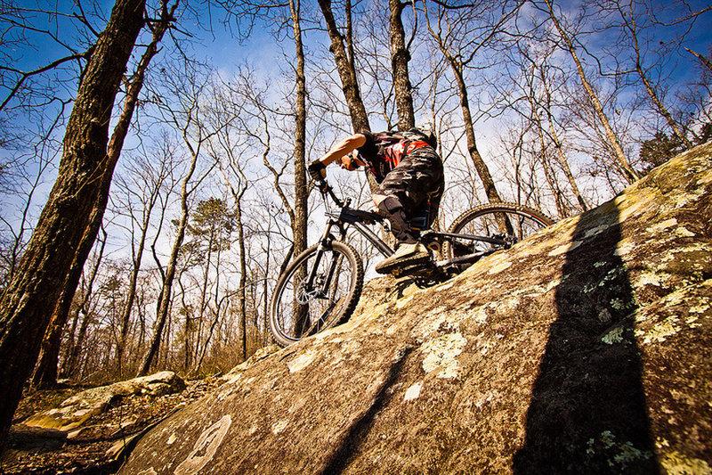 Mountain biking in Oak Mountain State Park.