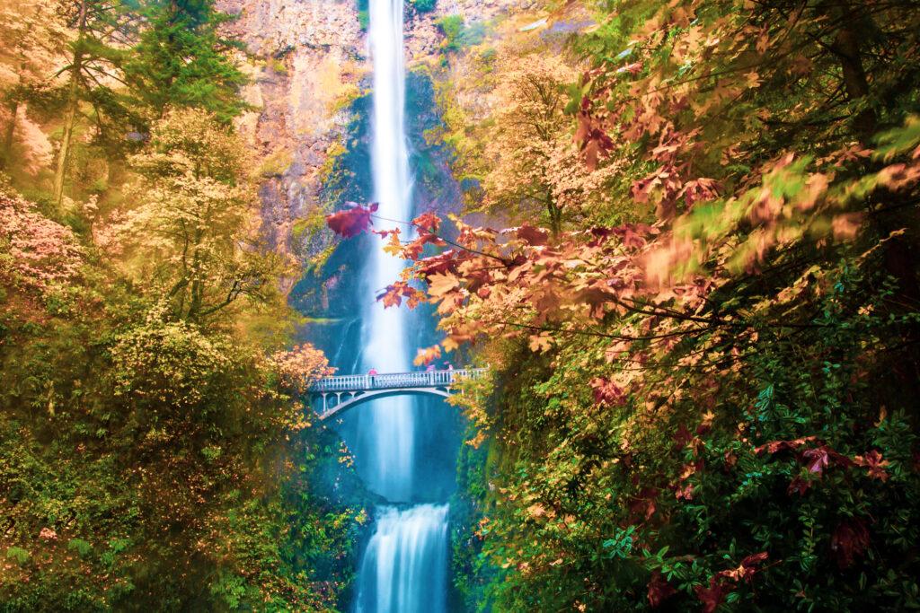 Multnomah Falls during the fall.