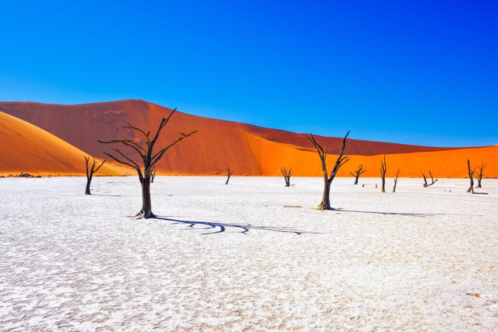 Namib-Naukluft National Park in Namibia.
