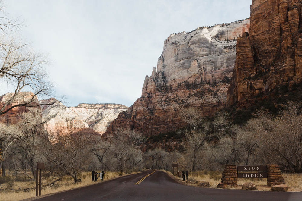Near the entrance to Zion Lodge.