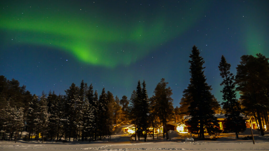 Northern lights over snowy forest, Finland.
