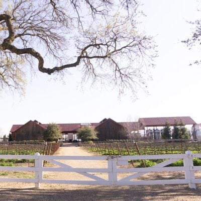 Oak Grove Vineyard in Lodi, California.