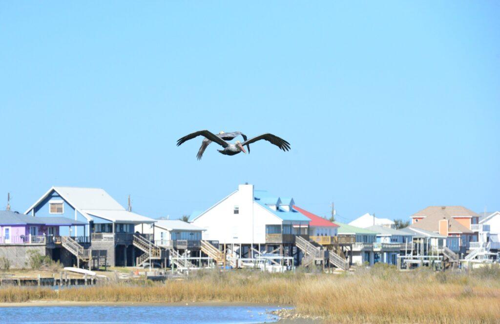 Oceanside rental properties on Dauphin Island.
