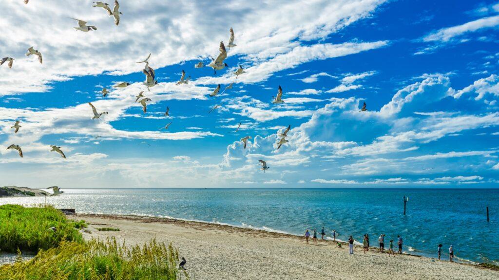 Ocracoke Lifeguarded Beach in North Carolina