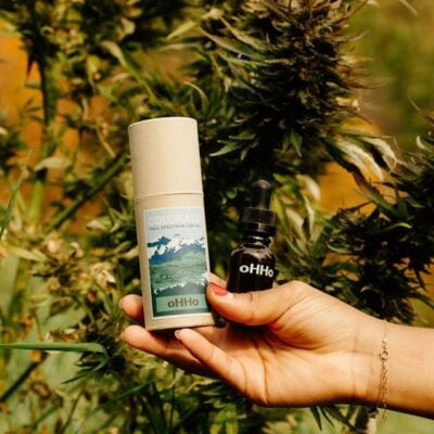 oHHo CBD Oil held in front of hemp plant