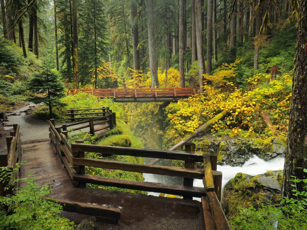 Olympic National Park in Washington.