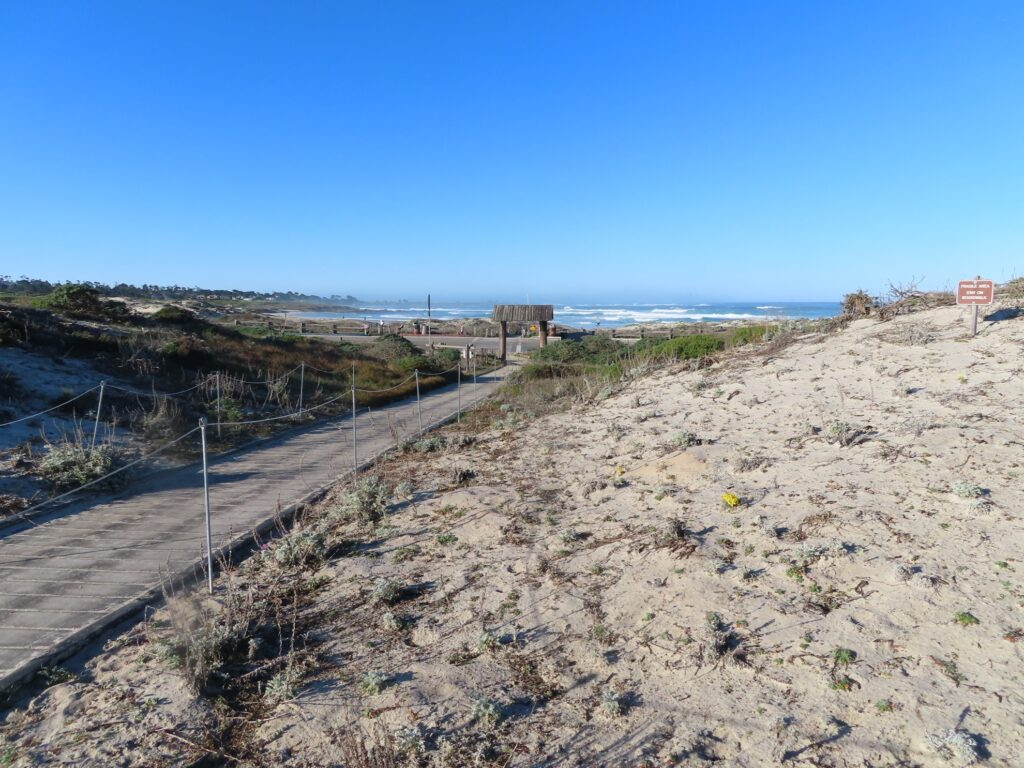 One of the many beaches along the coast of Monterey Bay.