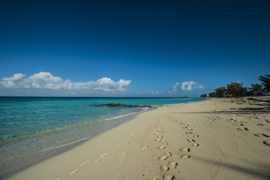 One of the many beaches on the island of Bimini in the Bahamas.