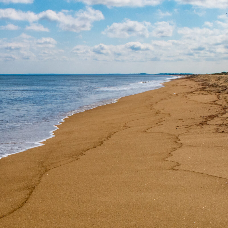 One of the many beautiful beaches on Plum Island.