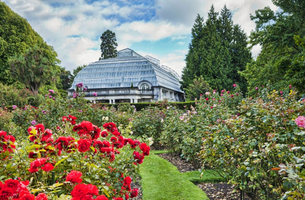 One of the many botanical gardens in Christchurch.