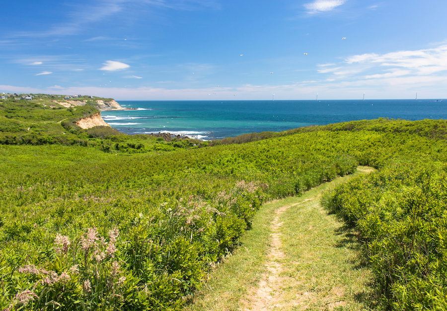 One of the many trails on Block Island.