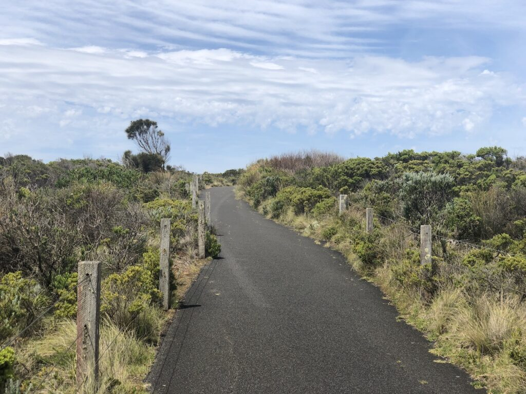One of the many walking paths along the Great Ocean Road.