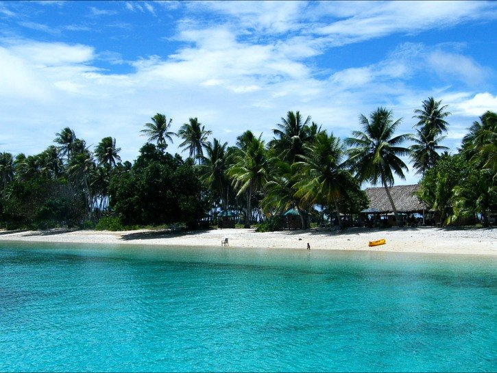One person on beach in the Marshall Islands, palm trees in the background.