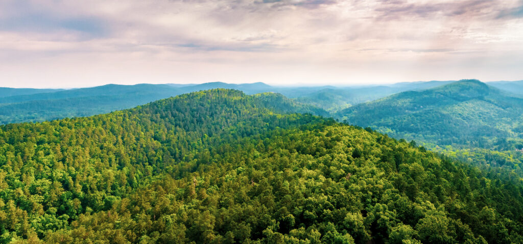 Ouachita National Forest in Hot Springs, Arkansas.