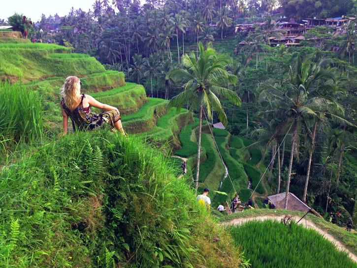 Panoramic views at Tegallalang Rice Terrace, Bali.