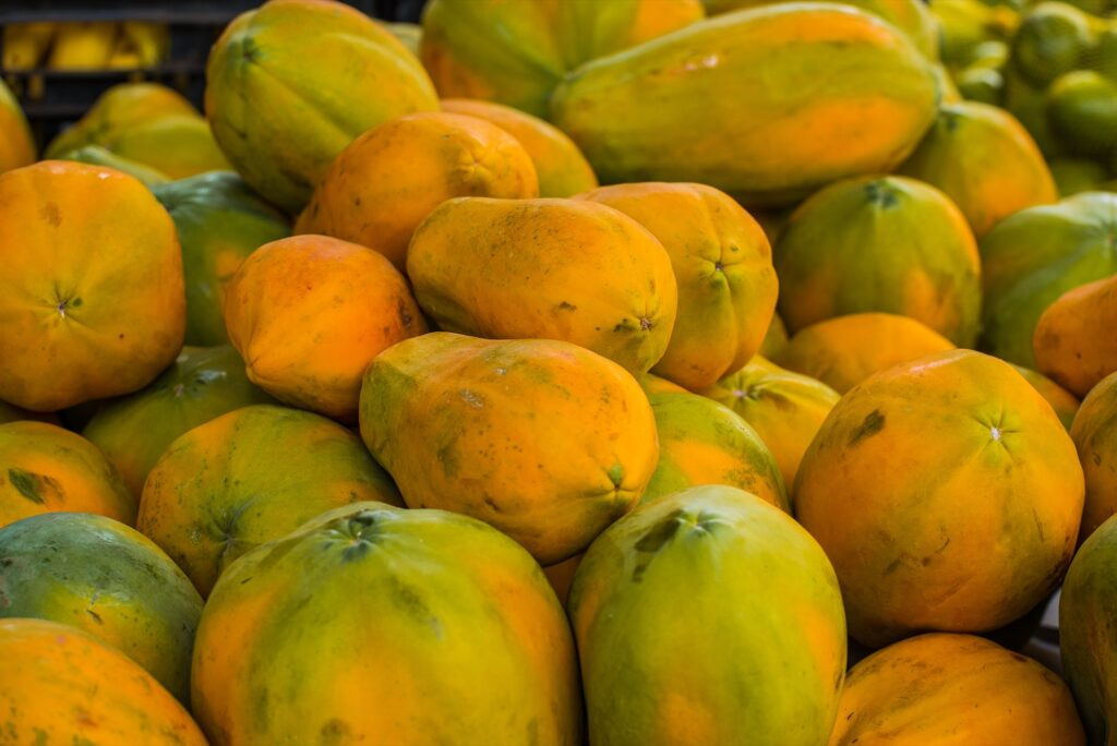 Papayas at a farmers market in Costa Rica.