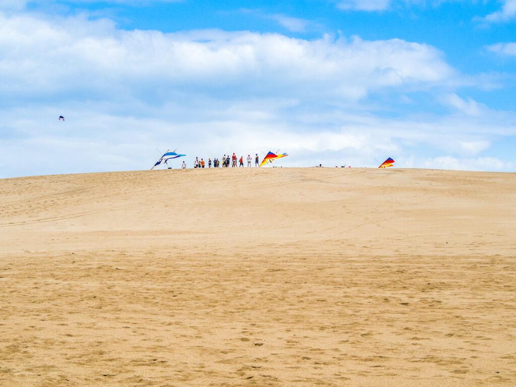 Paragliders at Jockey's Ridge in North Carolina.