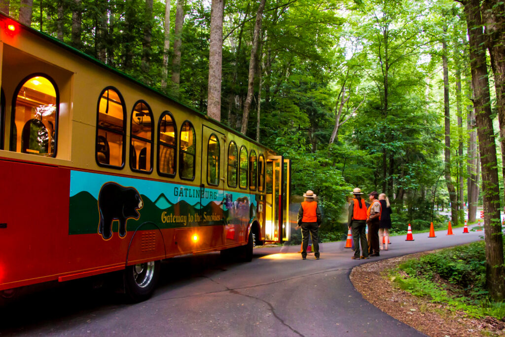 Park rangers monitor the trolley to view the synchronous fireflies