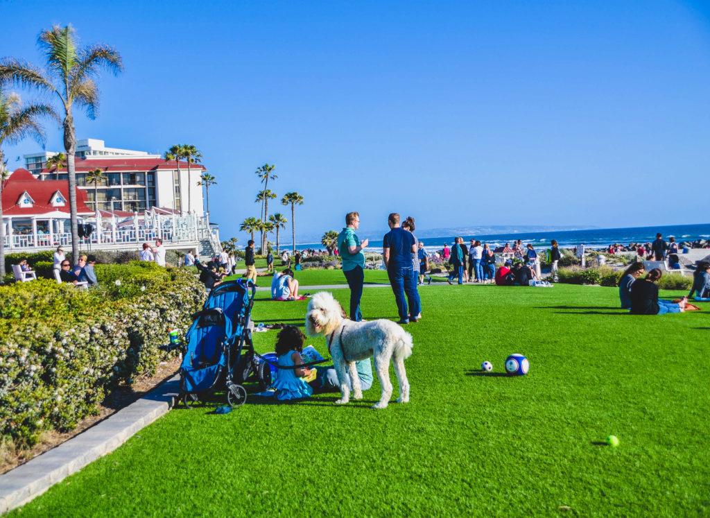 People and pets in Coronado.