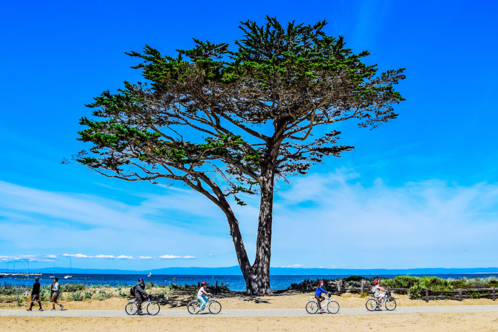People enjoying the Monterey Bay Coastal Recreation Trail.