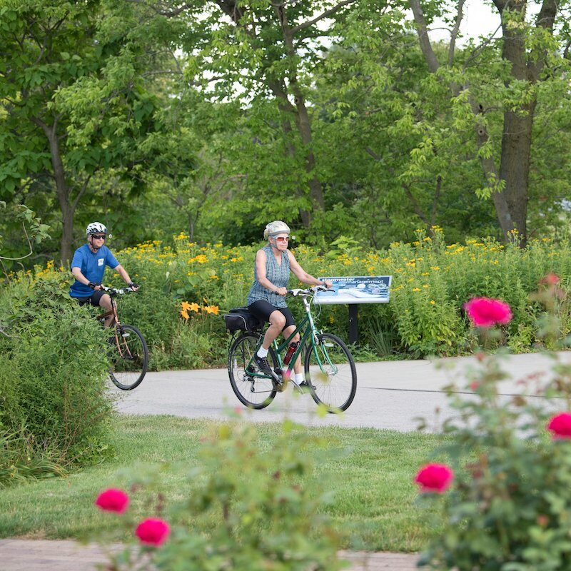 People riding bicycles on a Rails-To-Trails route.