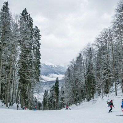 people skiing down a snowy mountain
