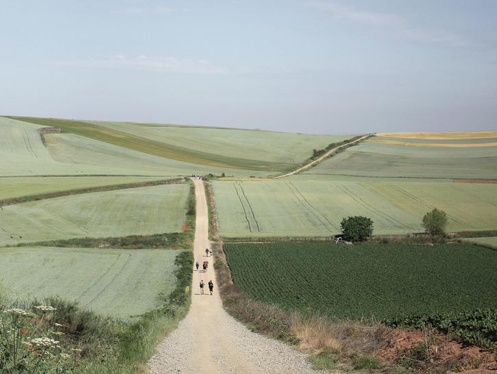 People walking Camino de Santiago through hilly farmland