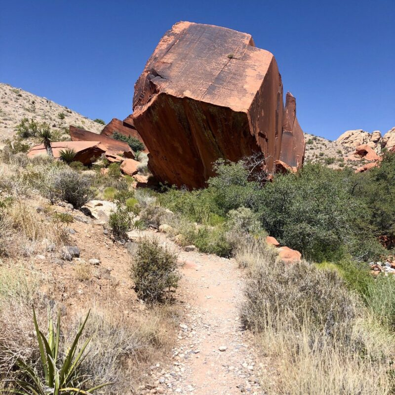 Petroglyph Rock on the Calico Hills Trail in Red Rock Canyon.