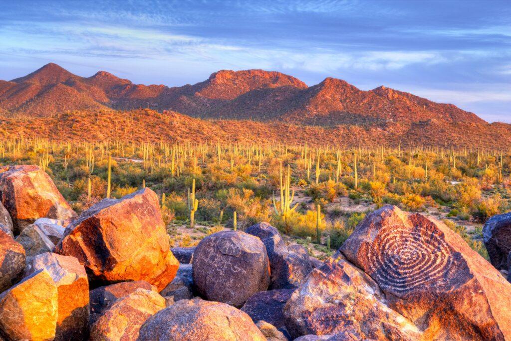 Petroglyphs in Saguaro National Park.