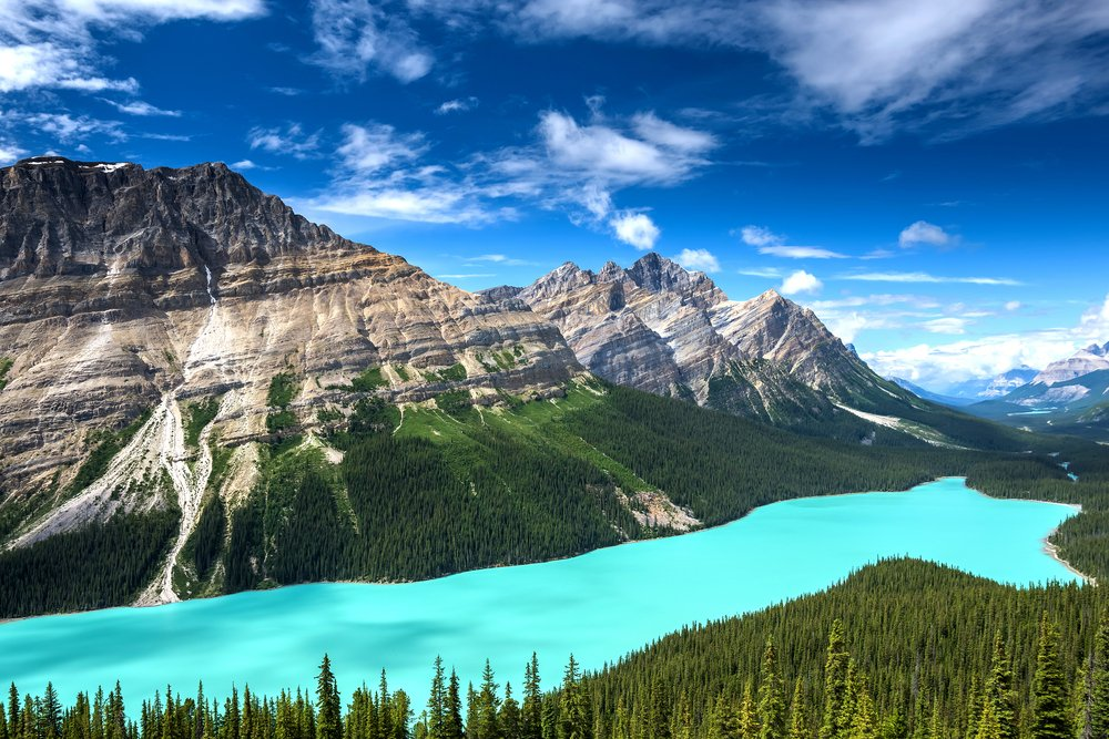 Peyto Lake in Canada's Banff National Park.