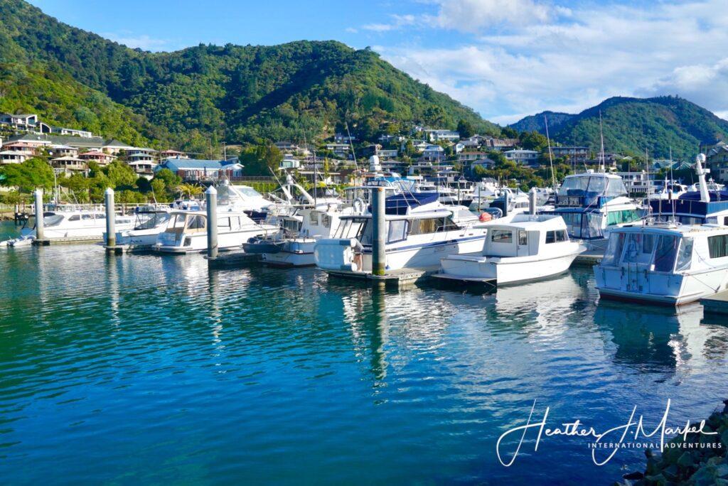 Picton harbor in New Zealand.
